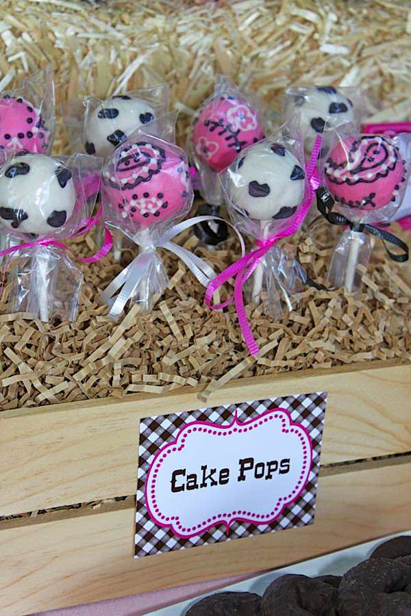 Cowgirl Party Cake Pops | Cow Girl Party Ideas