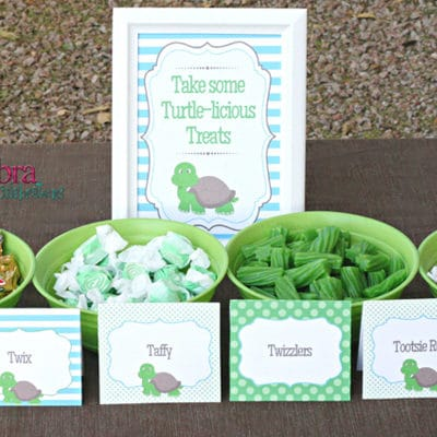 Turtle Themed Baby Shower Ideas