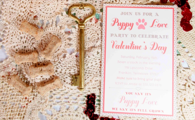 Paw-fect Puppy Love Valentine's Day Party