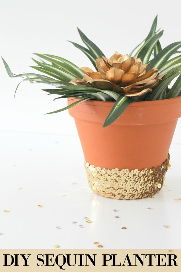 diy-sequin-planter-main