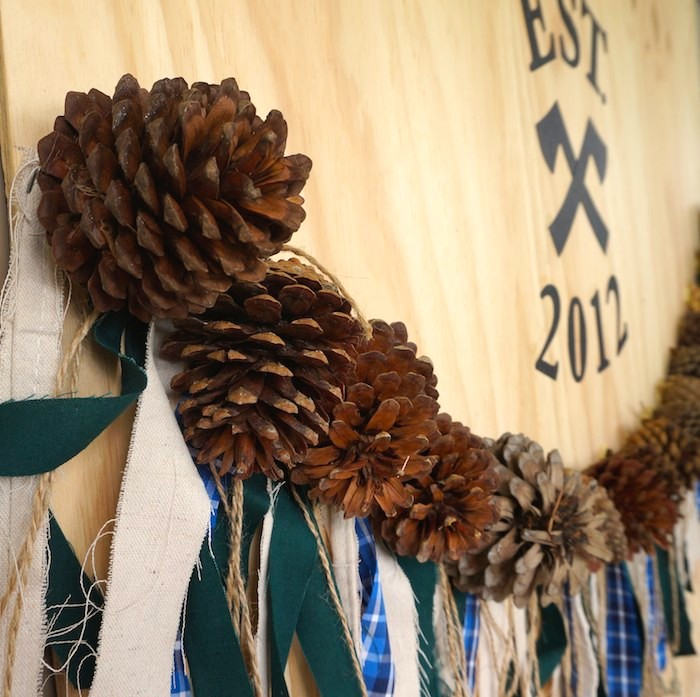 Pinecone and Fabric Fringe Banner