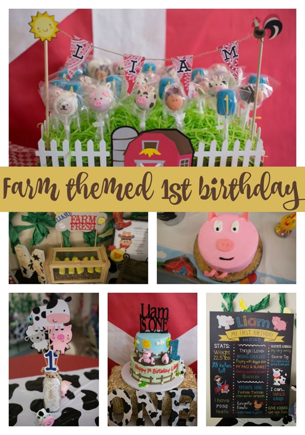 Farm Themed First Birthday Party Pretty My Party