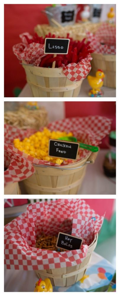 Farm Themed First Birthday Party Pretty My Party Party