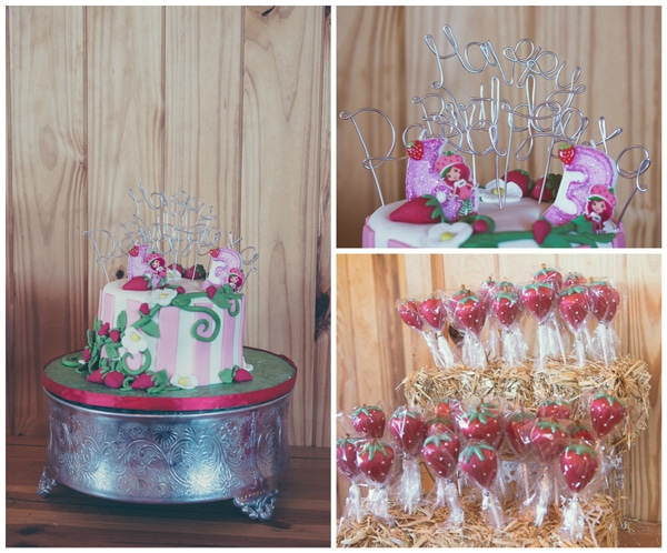 Strawberry Shortcake Farm Party | Pretty My Party