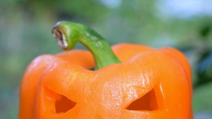 5 Creative Alternatives To Pumpkin Carving