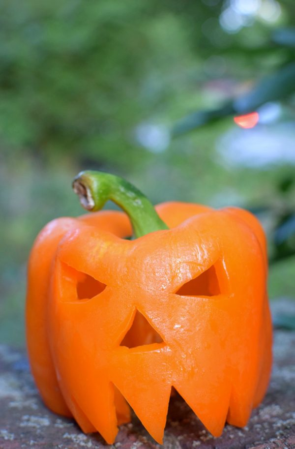 5 Creative Alternatives To Pumpkin Carving - Pretty My Party | www.prettymyparty.com