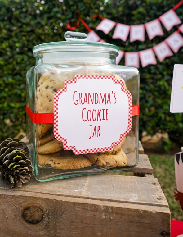 Red Riding Hood Picnic Birthday Cookies | Pretty My Party