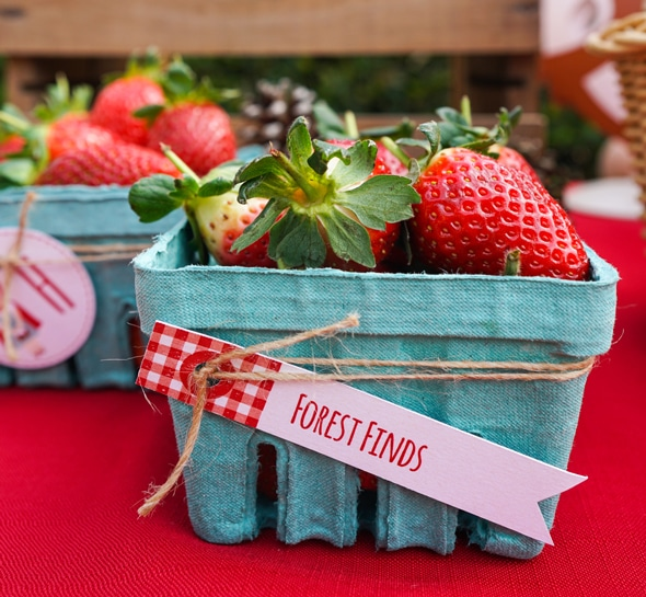 Red Riding Hood Picnic Birthday | Pretty My Party