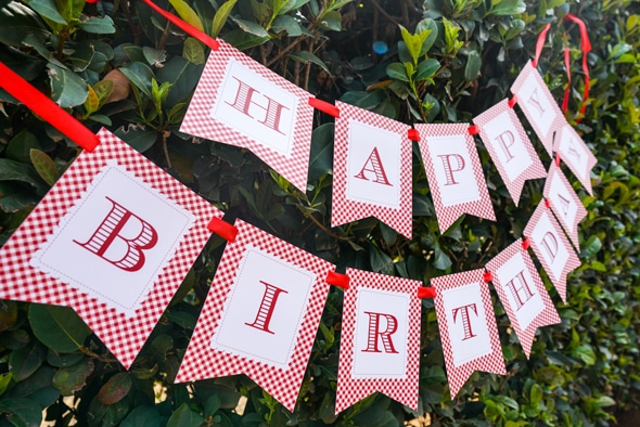 Red Riding Hood Picnic Birthday Banner | Pretty My Party