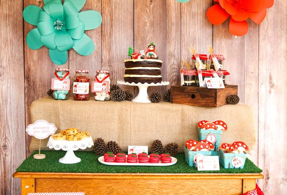 Red Riding Hood Picnic Birthday Party