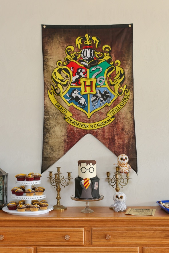 Harry Potter Themed Party Harry Potter Party Pretty My Party