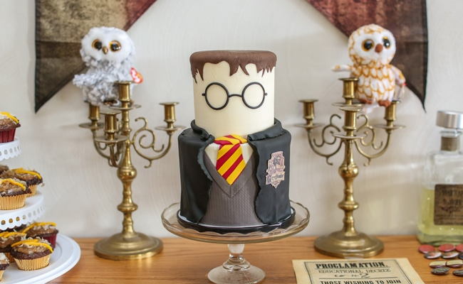 Harry Potter Themed Party Harry Potter Party Pretty My