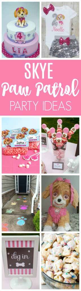 Skye Paw Patrol Party Ideas | Pretty My Party