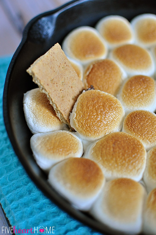 S'more Skillet Dip Recipe | Camping Party Ideas | Pretty My Party