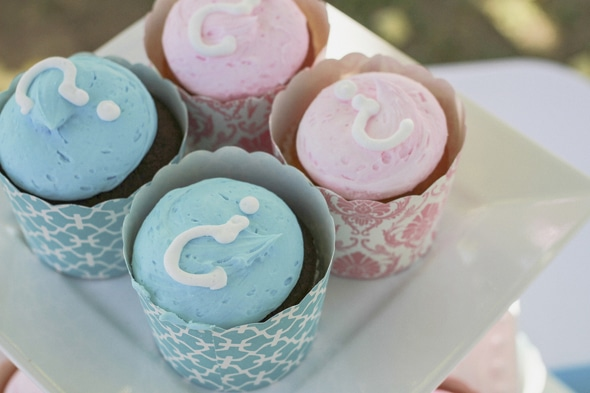 Blue and pink cupcakes for a rustic gender reveal party.