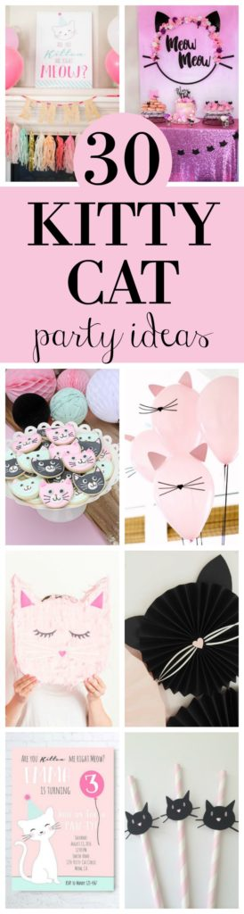 30 Cute Cat Birthday Party Ideas featured on Pretty My Party