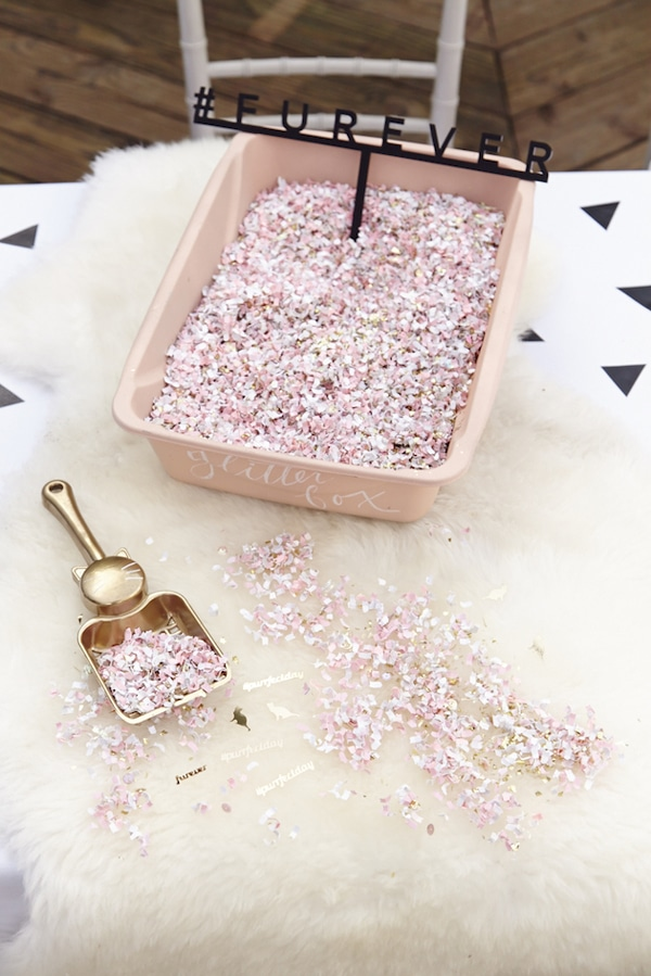 Cat Party Glitter Confetti Box