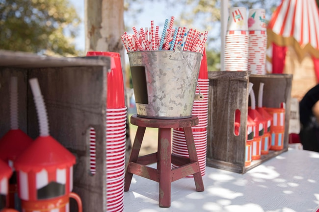 Whimsical Circus First Birthday Party Straws