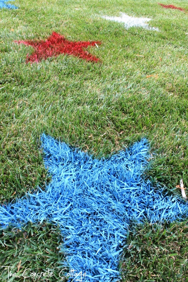 Painted Lawn Stars   Labor Day Party Ideas