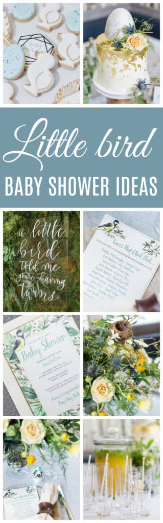 Sweet Little Bird Themed Baby Shower Ideas on Pretty My Party