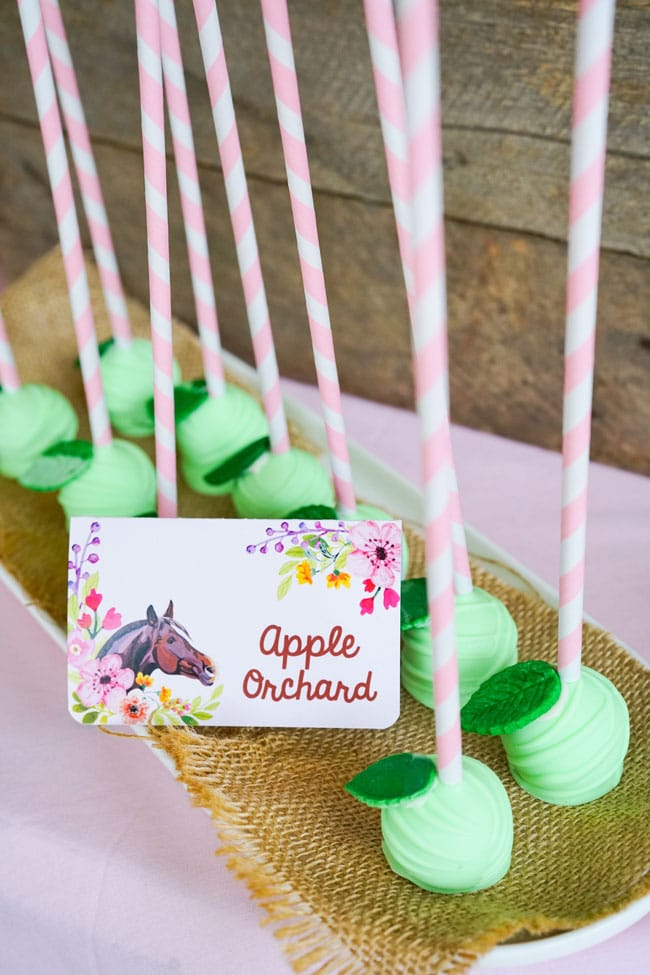 Apple Orchard Cake Pops - Horse Themed Birthday Party
