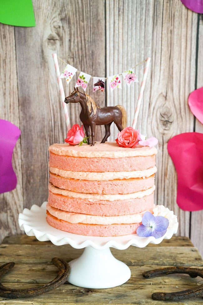 Horse Birthday Cake - Horse Birthday Party