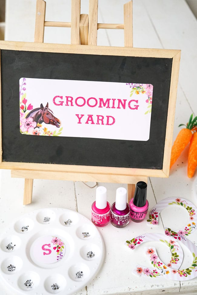 Horse Birthday Party - Grooming Station Idea