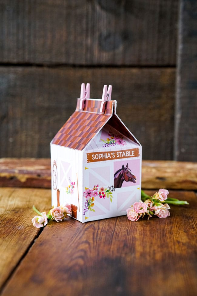 Horse Party Favor Boxes - Sophia's Stable