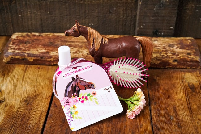 Horse Party Favors - Grooming Kit