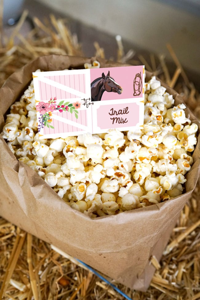 Horse Party Food Ideas