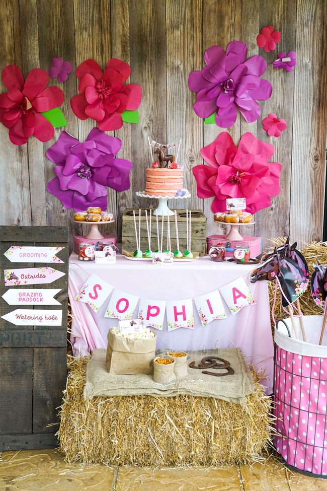 Rustic Horse Birthday Party Dessert Table