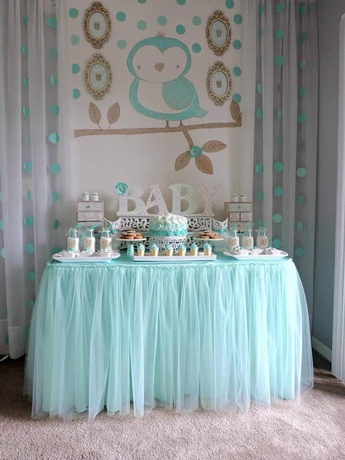 Turquoise Owl Baby Boy Shower Theme