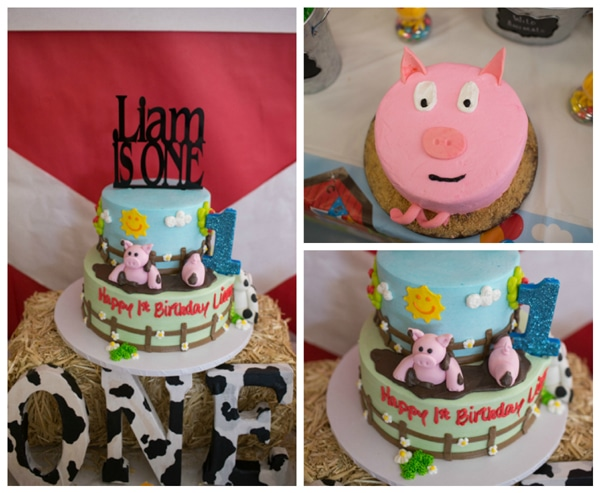 Boys 1st birthday ideas - Farm Animals