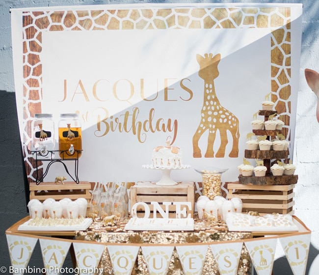 Boys First Birthday Ideas - Sophie the Giraffe