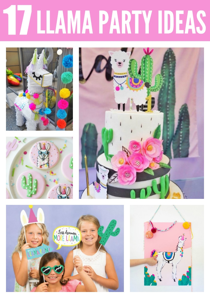 17 Fun Llama Party Ideas on Pretty My Party