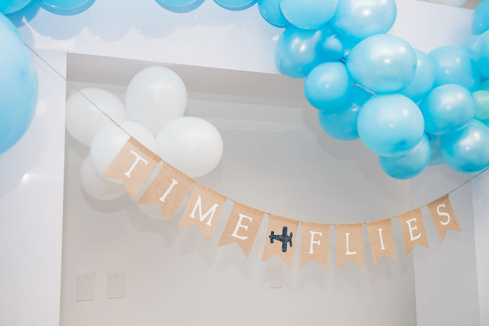 Time Flies Banner