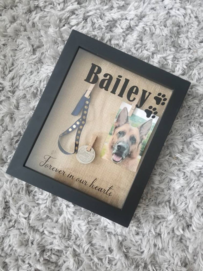 Pet Memorial Shadow Box Idea