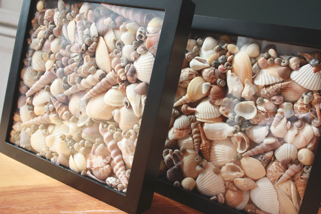 Sea Shell Vacation Shadow Box Idea