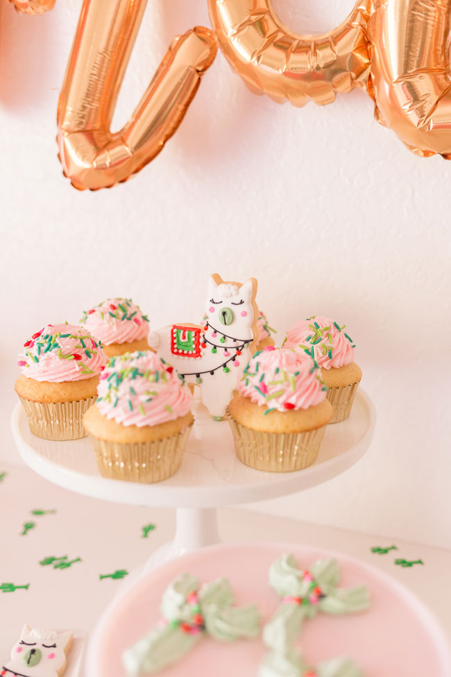 Cactus Cookie and Cupcakes