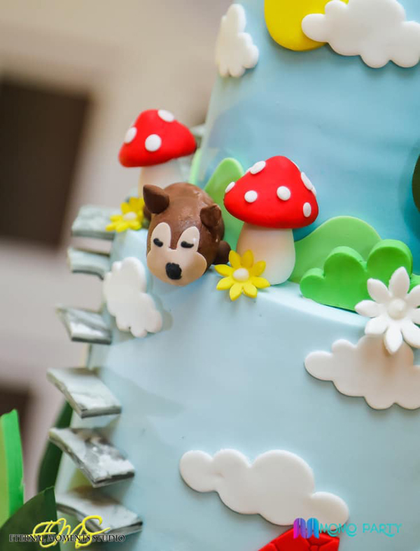 Little Red Riding Hood Birthday Cake Idea