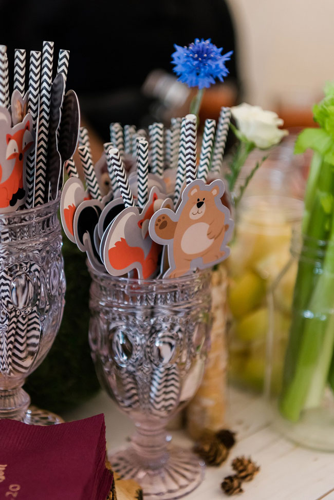 Woodland Animal Straws