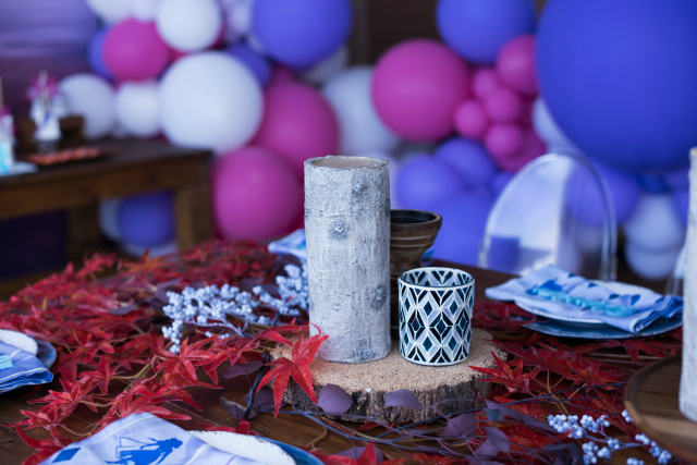 Frozen 2 Themed Rustic Centerpiece