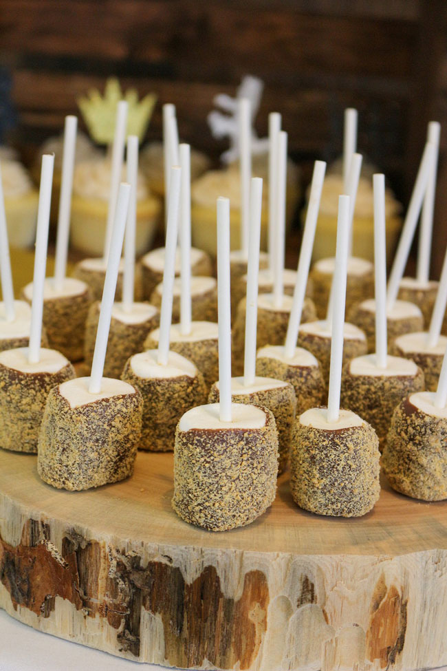 Where The Wild Things Are Birthday Party S'mores Pops