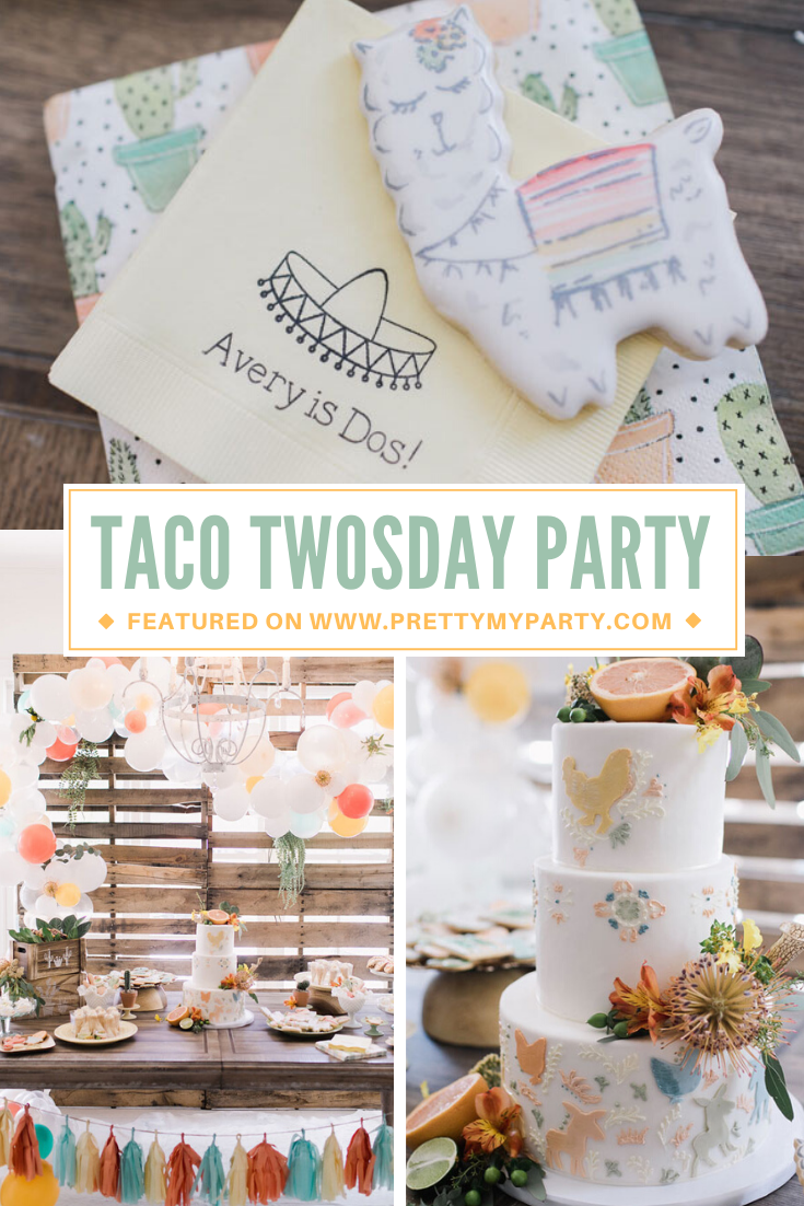 Taco TWOsday Birthday Fiesta on Pretty My Party