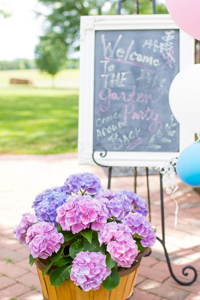 Kids Garden Party Welcome Sign and Flowers