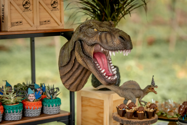 Roaring Dinosaur Birthday Party Decorations