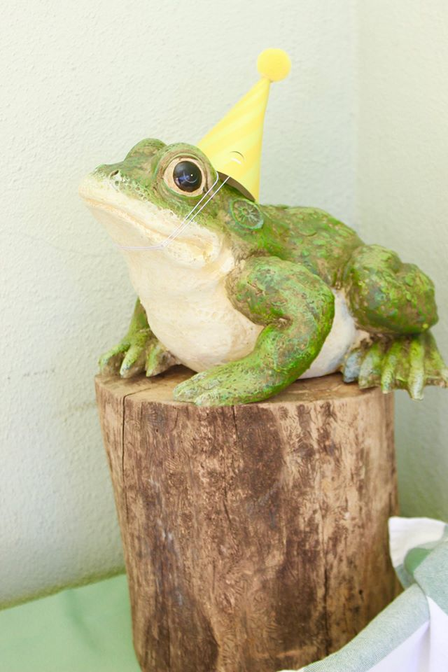Bug and Reptile Party Frog Decoration