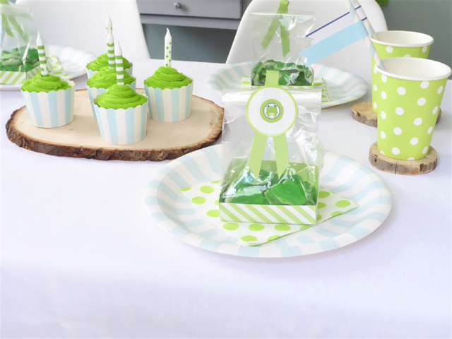Frog Party Place Setting