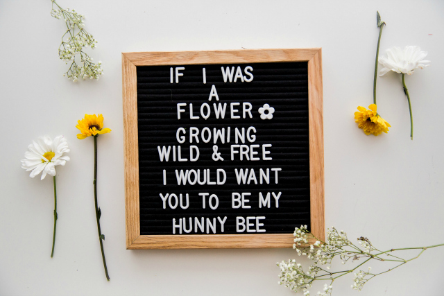 Honey Bee Party Letterboard Sign