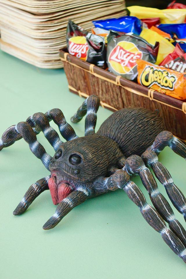 Bug and Reptile Party Sspider Decor